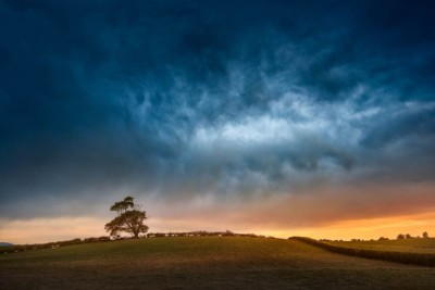 Stormy sky with interesting cloud formation above tree in a field